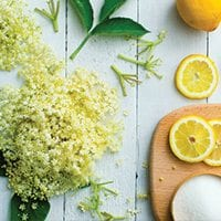 Elderflower and Lemon