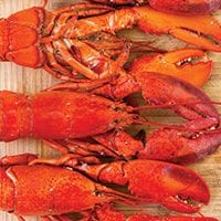 Salt Water Boiled PEI Lobster
