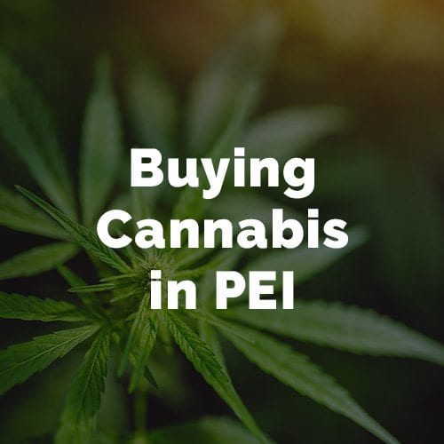 Buying Cannabis in PEI