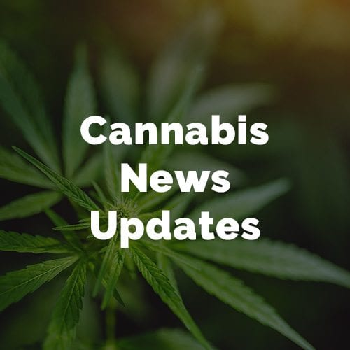 PEI Cannabis News Updates